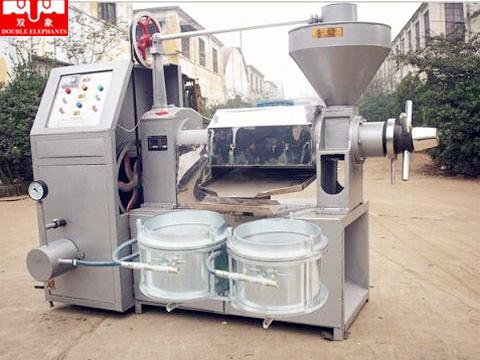 6YL-100A全自动榨油机